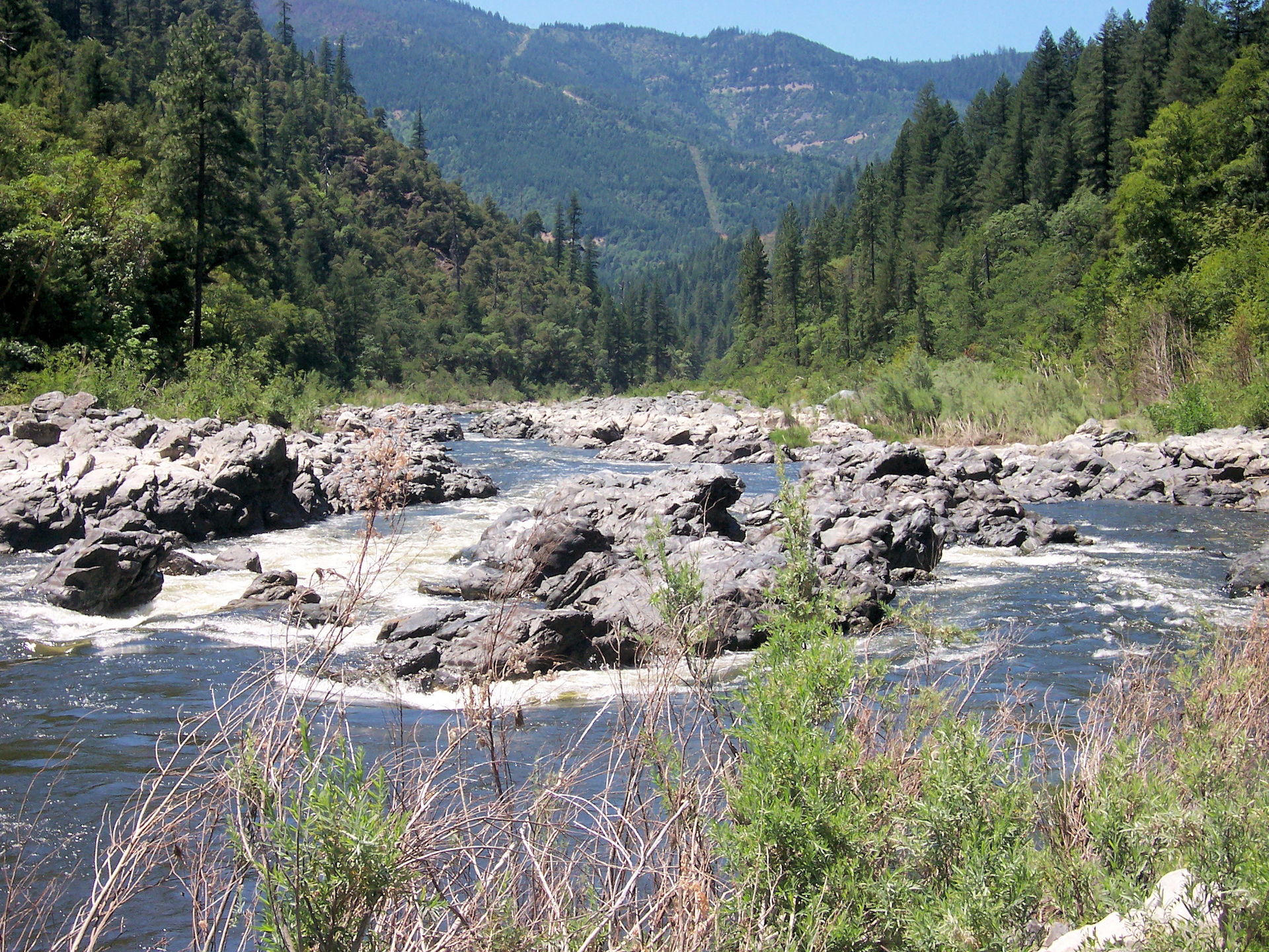 The Klamath River at Savage Rapids